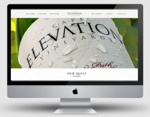 TCEG - portfolio images - websites - capelevation